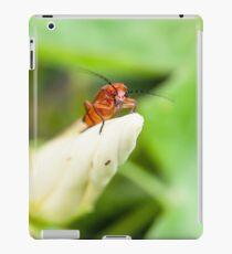 Red Soldier Beetle iPad Case/Skin