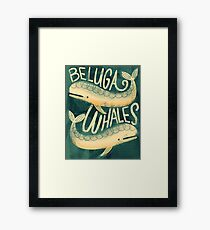 Beluga Whales Framed Print