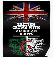 Britisch gewachsen mit algerischem Wurzel-Geschenk für Algerier von Algerien - Algerien-Flagge in den Wurzeln Poster