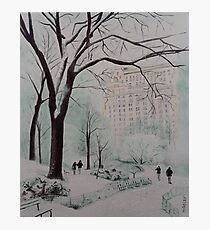 Central Park in the snow Photographic Print