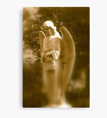 Memories of an Angel Canvas Print