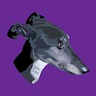 Tilly the greyhound by YSied
