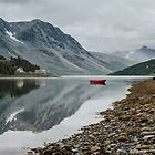 Norway I  - Landscape and Nature Photography by ewkaphoto