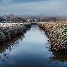 River in Winter by Paul Bird