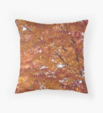 Pumpkin Potage  Throw Pillow