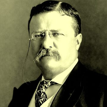 Theodore Roosevelt by IMPACTEES