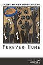 Furever Home by Michelle  Micalizzi