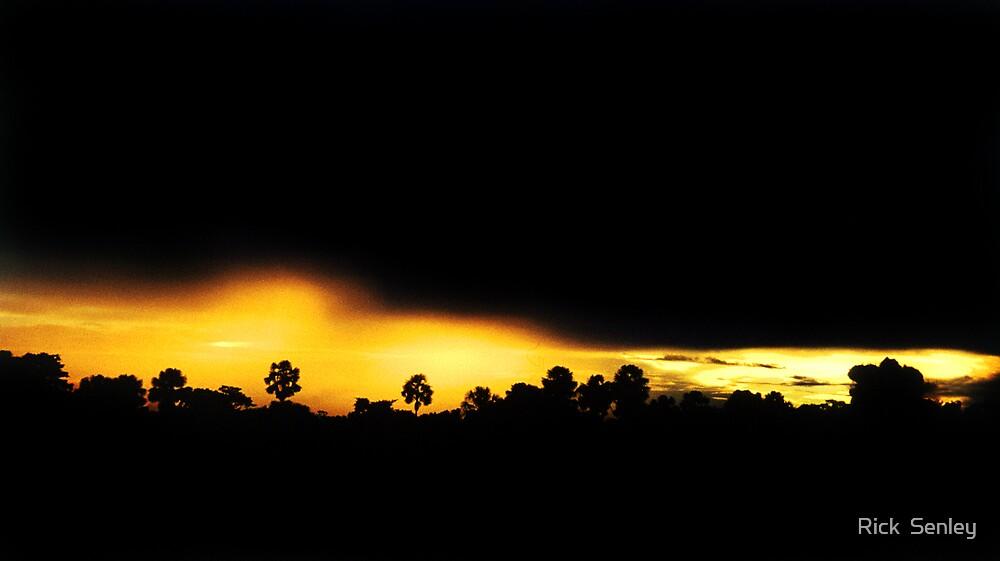 Storm by Rick Senley