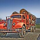 Old Log Truck by pdsfotoart