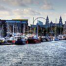 Brunswick Dock, Liverpool by Tom Gomez