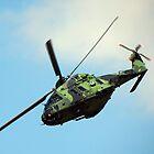 Finnish Army NH90 TTH by Barrie Woodward
