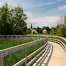 Sackville Waterfowl Park, New Brunswick by Amanda White