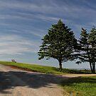 Cape George Lighthouse, Cape George, Nova Scotia by Amanda White