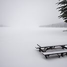 Rangeley Lake, Winter by Peter Clarke