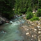 Mountain river in Oregon by Adam Nixon