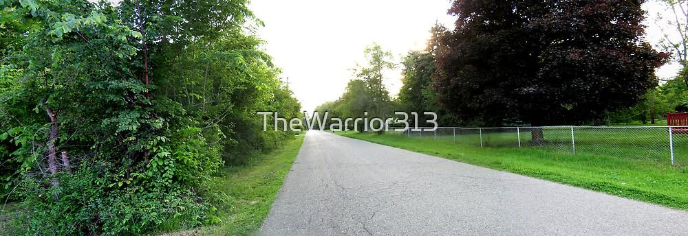 Long Road - Southfield, MI by TheWarrior313