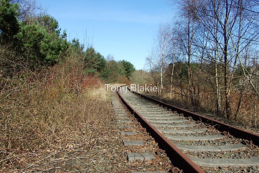 Disused railway line by Tony Blakie