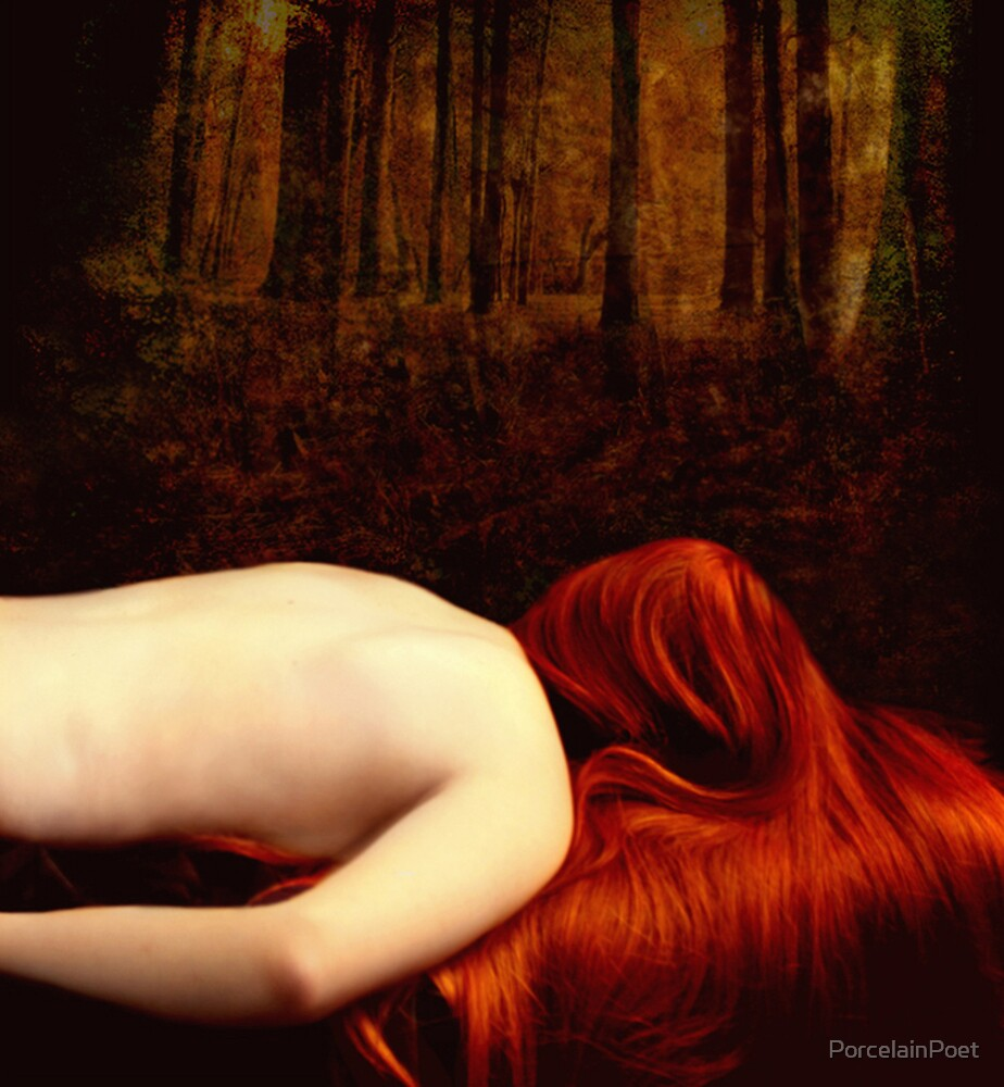 Upon the Woodland by PorcelainPoet