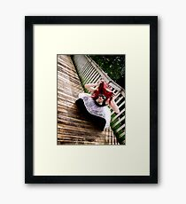 Insecticide Framed Print