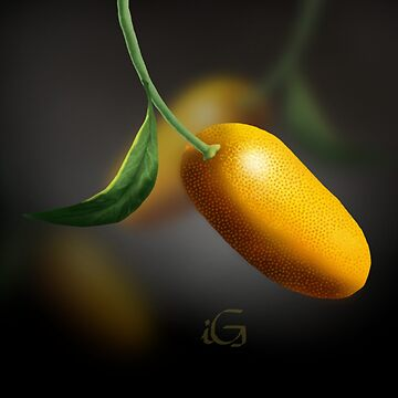 Kumquat  by thebigG2005