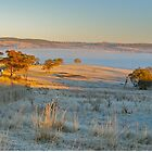 A Frosty Vista by Penny Smith