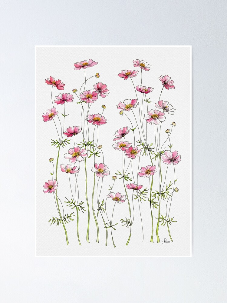 Alternate view of Pink Cosmos Flowers Poster