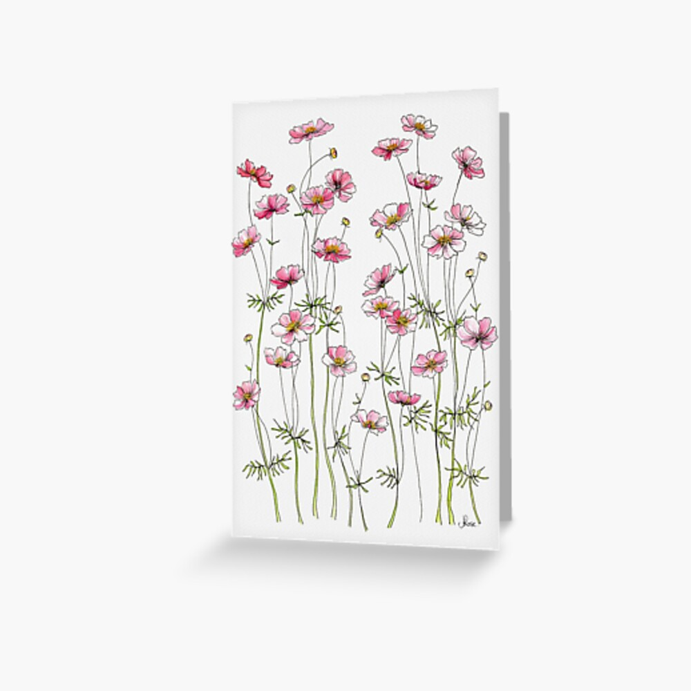 Pink Cosmos Flowers Greeting Card