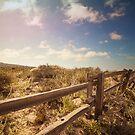 Fenced Path  by Martha Burns