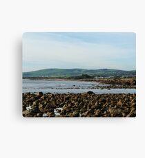 Coastal Edge Canvas Print