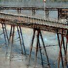 The Old Pier by Alexandra Lavizzari