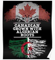Kanadisches gewachsenes mit algerischem Wurzel-Geschenk für Algerier von Algerien - Algerien-Flagge in den Wurzeln Poster
