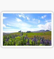Ingjaldscholskirkja - isolated church - Rif Iceland Sticker