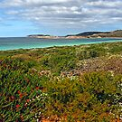 Rossiter Bay, Cape Le Grande National Park, Esperance,  Western Australia (Y) by Adrian Paul