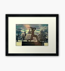 The Don Framed Print