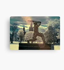 The Don Canvas Print