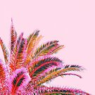 Fiesta palms - candy pink by Gale Switzer