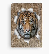 Bengal Tiger in Action Canvas Print