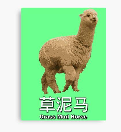Grass Mud Horse Canvas Print