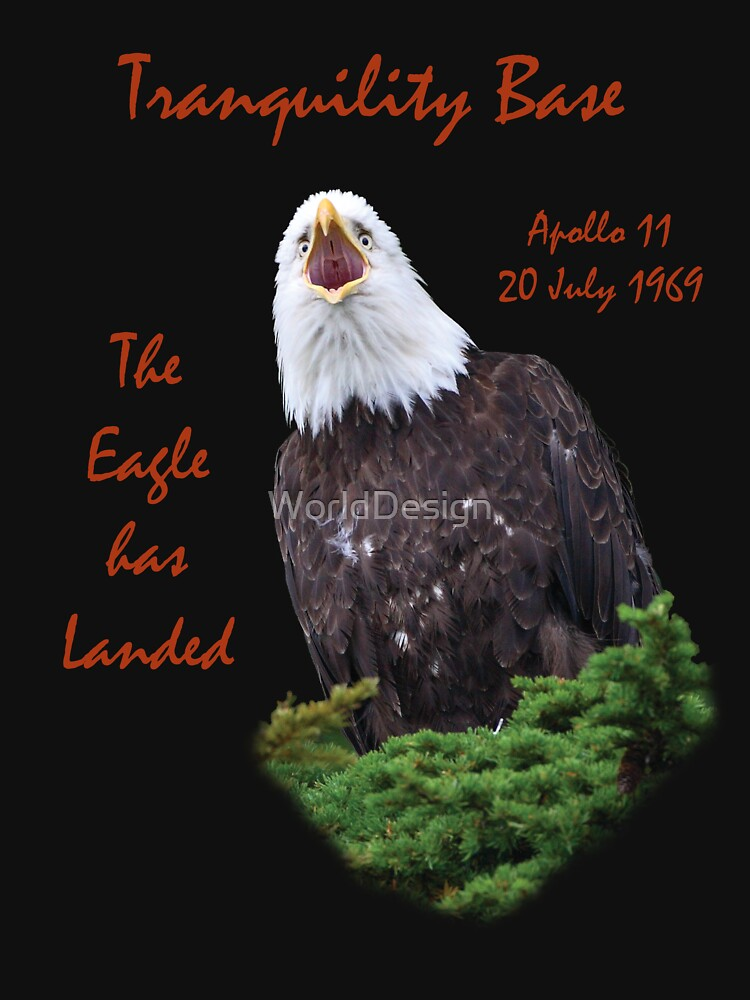 Apollo 11 Celebration by WorldDesign