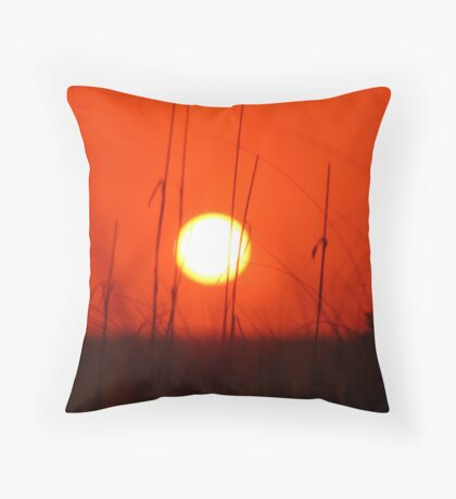 Sarasota Sun Throw Pillow