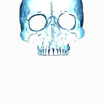 Half Skull by agenda