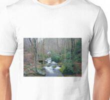 Creek Falls Unisex T-Shirt