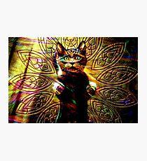Lámina fotográfica Cat Energy