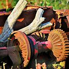 Rusting by Paul Morley