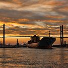 Port of Savannah by Michael Coots