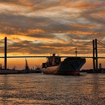 Port of Savannah by xerotolerance