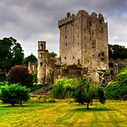 Blarney Castle by Tom Gomez