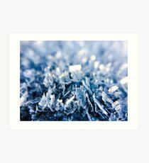Frosty ice crystals V1 Art Print