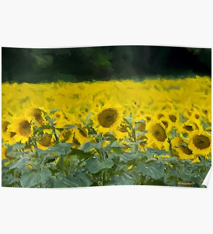 The Painted Sunflowers Poster