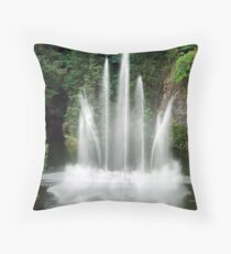 The Ross Fountain Throw Pillow